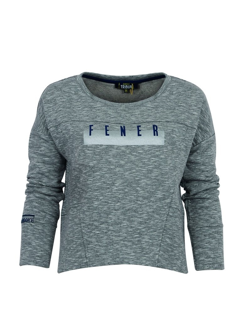 Fenerium Sweatshirt TK017B8K18 isiris Kadin Sweat